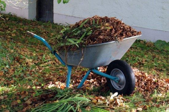 Tuin opruimen voor de winter